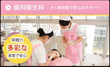 歯科衛生科 - 少人数体制で安心のサポート - 試験合格率 100% 就職も安心